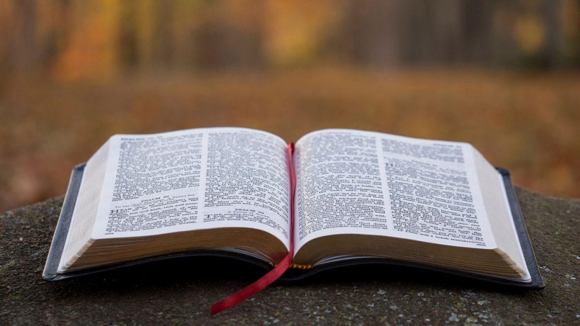 Message Dimanche 5 Janvier 2020 -Les 3 leçons dans Jean 21 v15 à 17 - Par Pasteur Laurent Demol